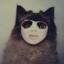 balthcat